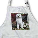 click on Old English Sheepdog to enlarge!