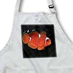 click on Clownfish to enlarge!