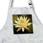 click on Yellow Lotus Flower to enlarge!