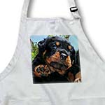 click on Dog Rottweiler Puppy to enlarge!