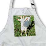 click on Farm Animals Goat to enlarge!