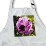 click on Wild Flowers Pink Anemone to enlarge!