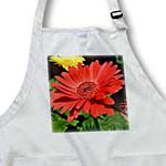 click on red gerbera daisy to enlarge!