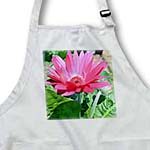 click on pink gerbera daisy to enlarge!