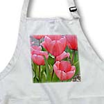 click on Pink Tulips to enlarge!