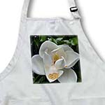 click on White Magnolia Floral to enlarge!