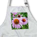 click on Pink Summer Echinacea Floral to enlarge!