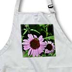click on Pink Summer Echinacea and Bee Floral to enlarge!