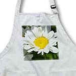 click on Simple Daisy Flowers Floral Photography to enlarge!