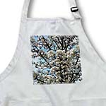 click on Spring Sky and Flowering Tree Flowers to enlarge!