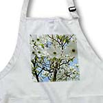 click on Spring White Flowering Tree Flowers Floral Photography to enlarge!