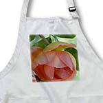 click on Touch of Romance Peach Rose Floral Flowers to enlarge!