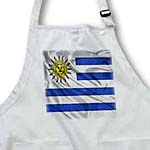 click on Uruguay Flag to enlarge!