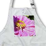 click on The Visitor- Pink Zinnia Flower and Butterfly- Flowers to enlarge!