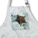 click on Underwater Starfish With Nautical Rope Frame to enlarge!