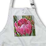 click on Pretty Protea- Flowers- Hawaiian- Tropical Photography to enlarge!