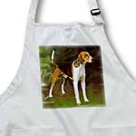 click on American Foxhound to enlarge!