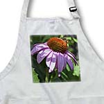 click on Summer Buzz- Echinacea Flower- Floral Photography- Bees to enlarge!