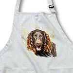 click on Boykin Spaniel to enlarge!