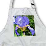 click on Sweet Iris- Purple Iris Flowers- Floral Photography to enlarge!