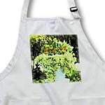 click on Urn With Ivy n Orange Flowers to enlarge!