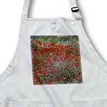 click on Red Windflower - anemone coronaria, poppy anemone, spanish marigoldanemone, flower, meadow anemone to enlarge!