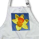 click on Daffodil - daffodils, flowers, jonquils, daffodils, narcissus, saint david day, spring to enlarge!