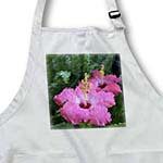 click on Pink Hibiscus Floral Art- Pink Flowers to enlarge!