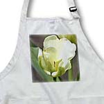 click on White Spring Tulip- Flowers- Floral Photography to enlarge!