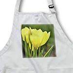 click on Yellow Tulips in Spring- Flowers- Floral Photography to enlarge!