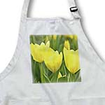 click on Three Yellow Tulips- Spring Flowers- Floral Photography to enlarge!
