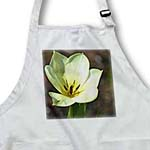 click on White Tulip Blossom- Flowers- Spring Photography to enlarge!