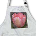 click on Tulip Flower in Spring- Pink Floral Photography to enlarge!