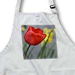 click on Pretty Spring Red Tulip Flower- Floral Photography to enlarge!
