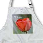 click on Red Tulip Gratitude- Inspirational- Flowers to enlarge!