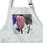 click on Pink Spring Tulip Flower- Floral Photography to enlarge!