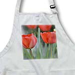 click on Red Tulips on a Spring Day- Flowers- Floral Photography to enlarge!