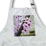 click on Pretty Spring Floral- Cherry Blossom Flowers- Photography to enlarge!