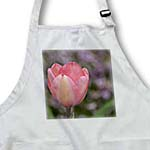 click on Pretty Tulip- Pink Flowers- Spring Photography to enlarge!