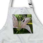 click on Pink Lily- Spring Flowers- Floral Photography to enlarge!