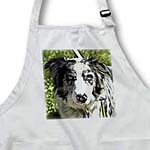 click on Dogs Blue-Merle Border Collie to enlarge!