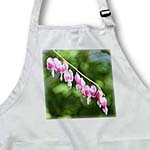 click on Vine of Bleeding Hearts - Pink Flowers -Spring Photography to enlarge!