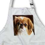 click on Pekinese Portrait to enlarge!