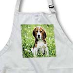 click on For Love Of A Beagle to enlarge!