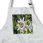 click on Passion Flowers to enlarge!