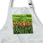 click on Red Tulips n Green Grass to enlarge!