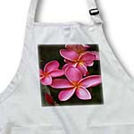 click on Tropic Frangipani Pink Flowers to enlarge!
