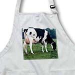 click on Holstein Cow to enlarge!