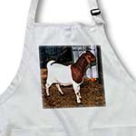 click on Boer Doe Goat to enlarge!
