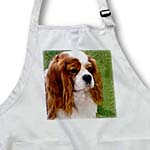 click on Cavalier King Charles Spaniels to enlarge!
